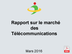 Report on the telecommunications market